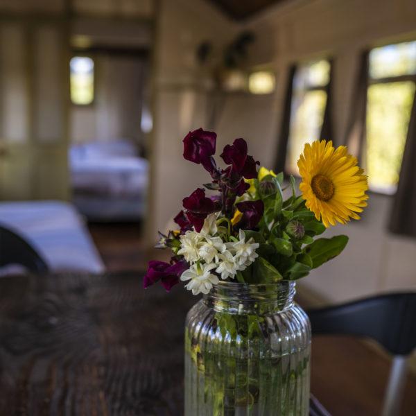 Stay in Overlander Train Solscape Raglan flowers