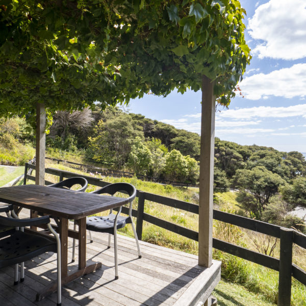 Raglan accommodations views Solscape Ivy Cottage